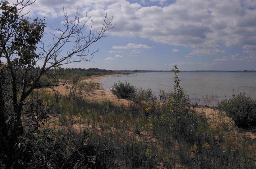 Lake Huron shore