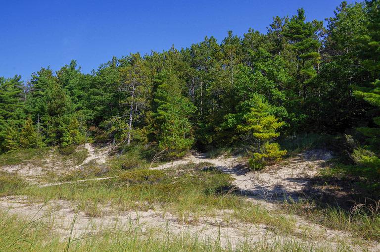 beach at Petoskey State Park