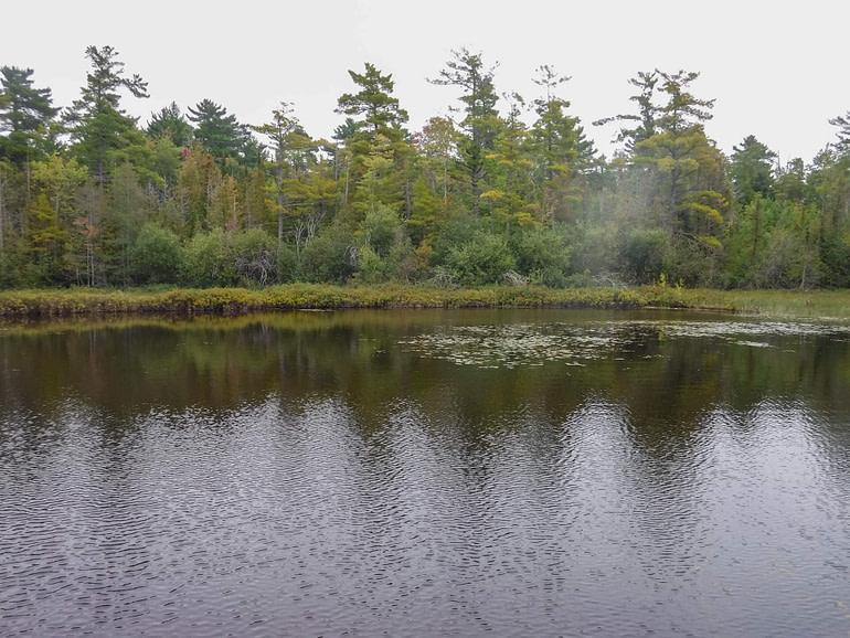 Lake Charlevoix shoreline