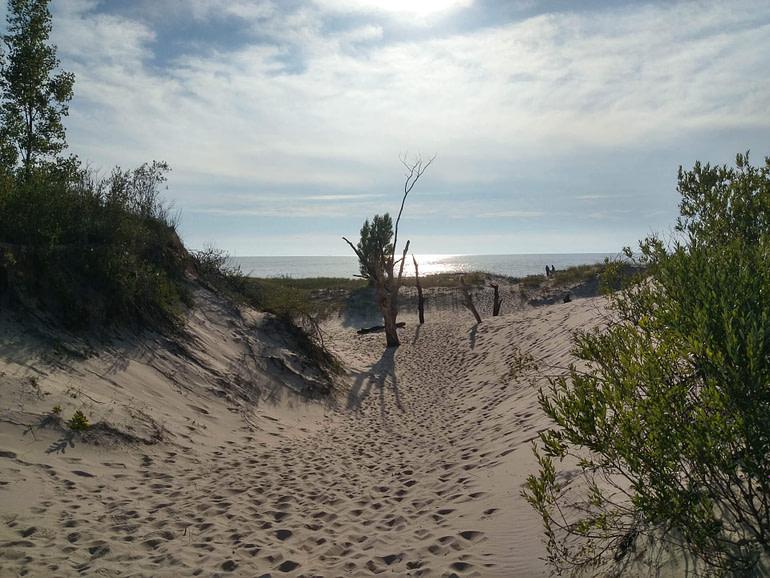 path through dunes