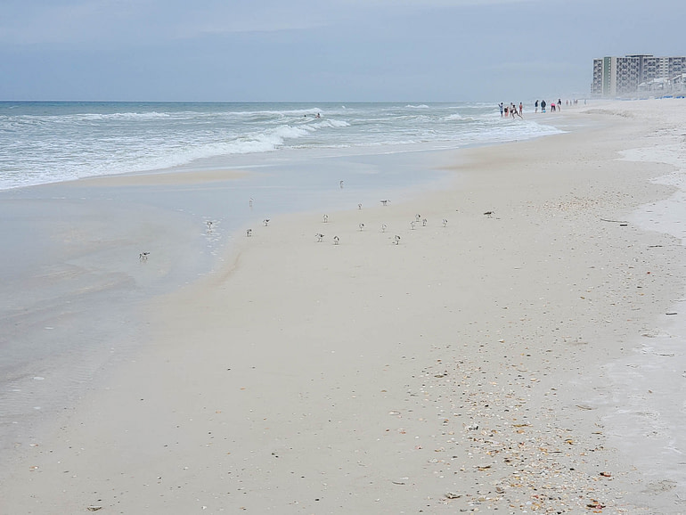 beach toward Rosemary Beach