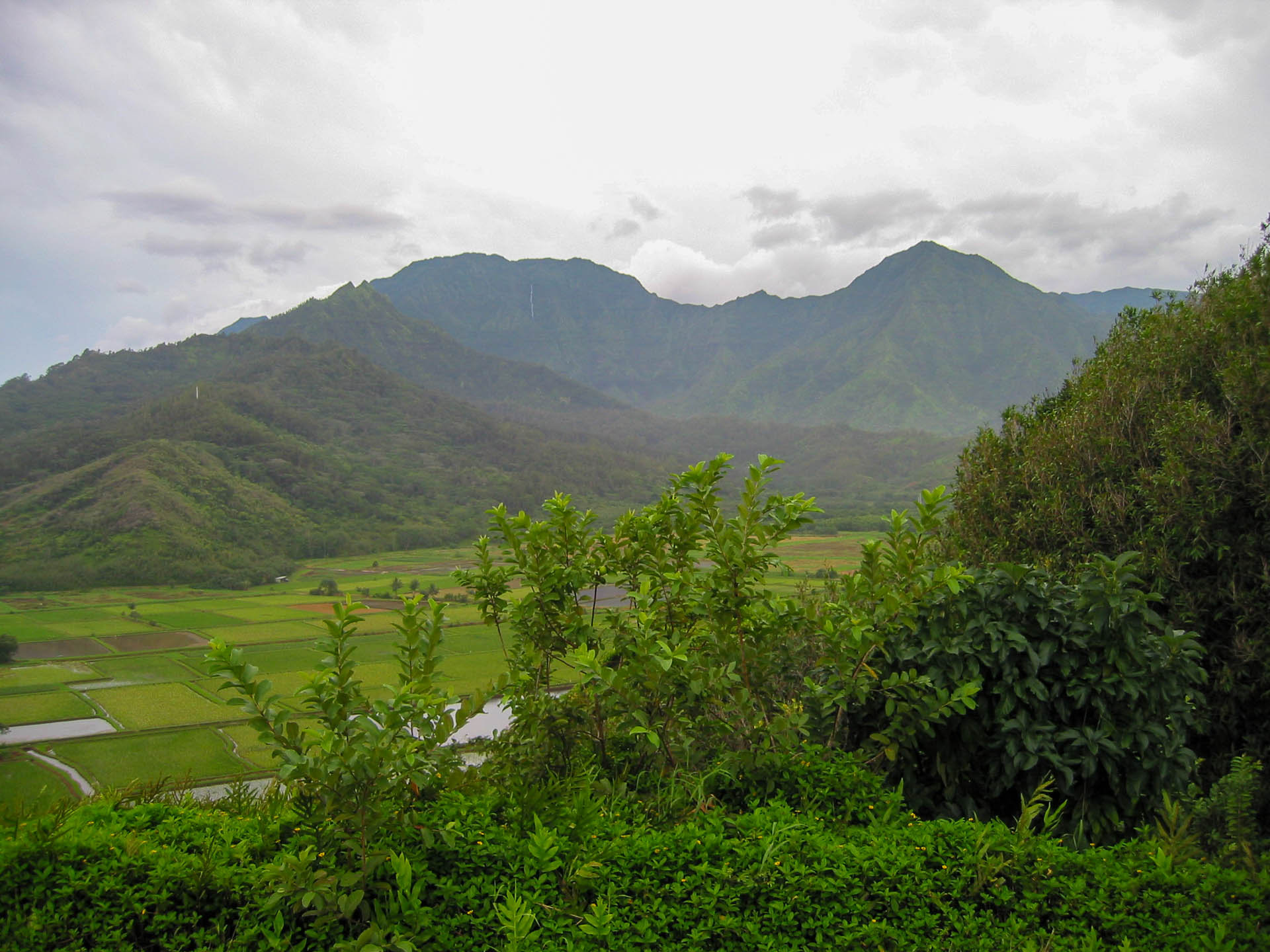 lush valley and mountains