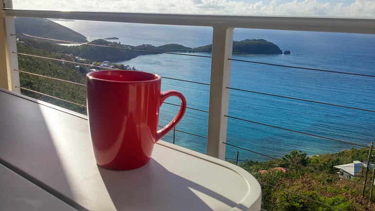 view with cup