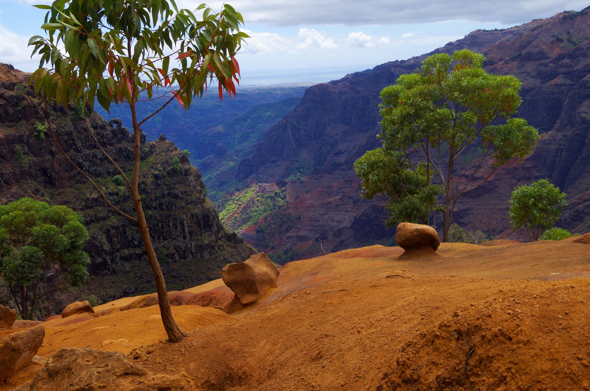 overlook into Waimea Canyon
