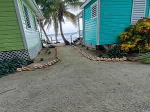 conch shell border