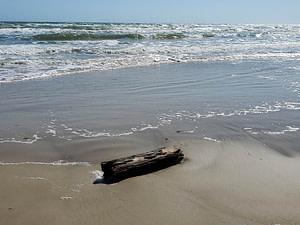 log in waves