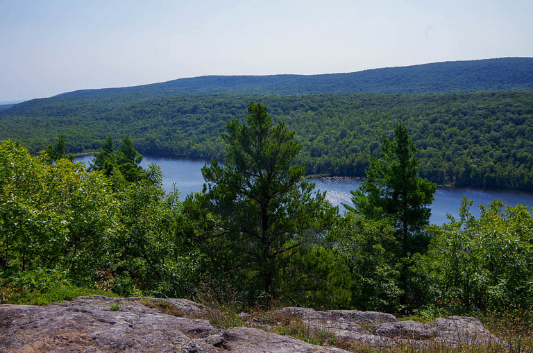Escarpment trail view
